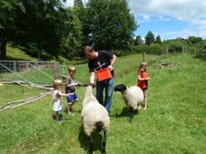 Bulent Yaprak feeding sheep with children